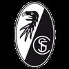 Фрайбург - Бавария. Смотреть онлайн, прямая видеотрансляция - изображение 1