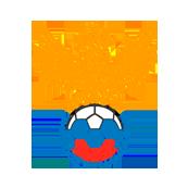 Россия - Уэльс 0:3. Чемодан - вокзал - Россия - изображение 1