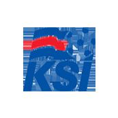 Исландия - Австрия 2:1. Синий в тренде - изображение 1