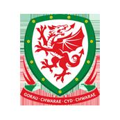 Уэльс - Словакия 2:1. Валлийская радость - изображение 1